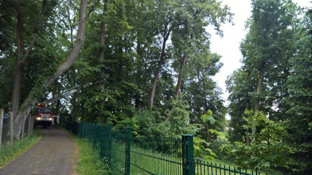 Baumpflege Grassmann - 35 m Arbeitsbühne
